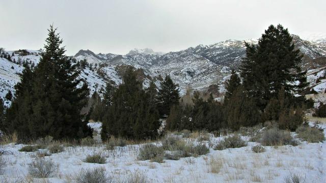 snowshoeing011716bb